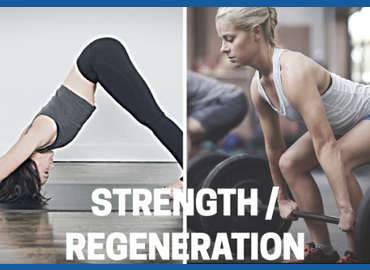 Strength & Regeneration Training